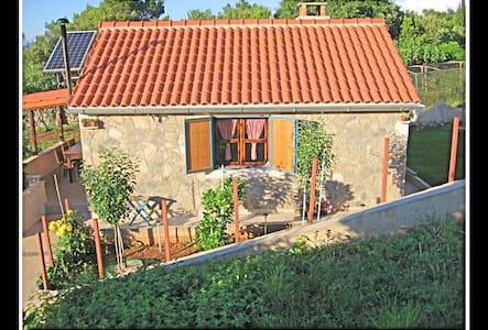 Villa Viva ~ Brks cottage