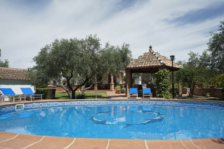 Best luxury villa in Ronda. El Aljarafe