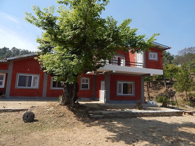 Chitai Homestay Entire Cottage