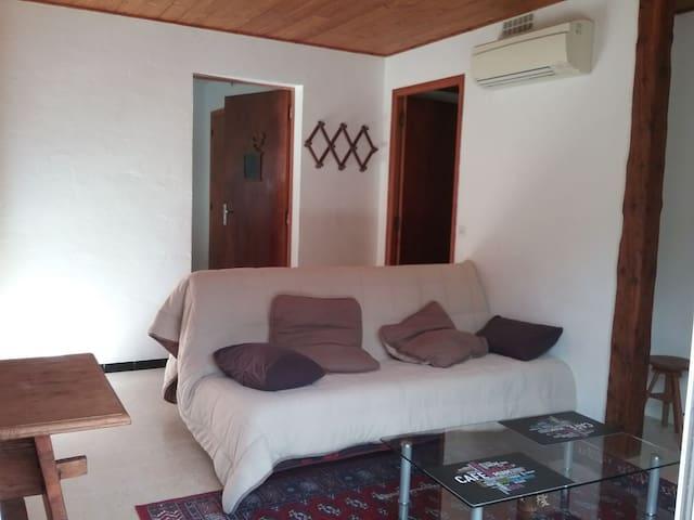 Le salon avec l'accès à la cuisine derrière et aux chambres/salle de bain/WC sur le côté