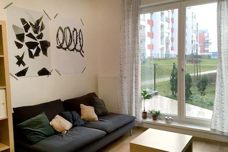 Cozy studio-apartment with garage - 布拉格