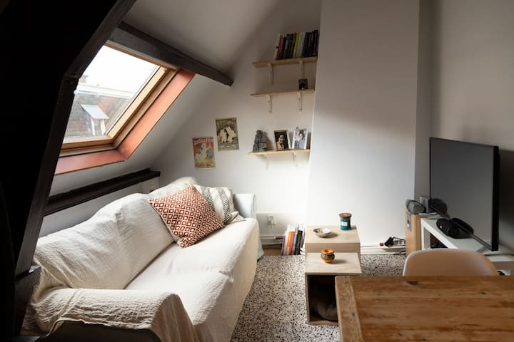 Cozy Attic Apartment In The City Center