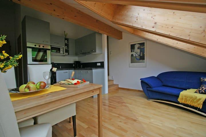 """Wälderhaus Apartment """"Dahlie"""" - Schwarzenberg - Apartament"""