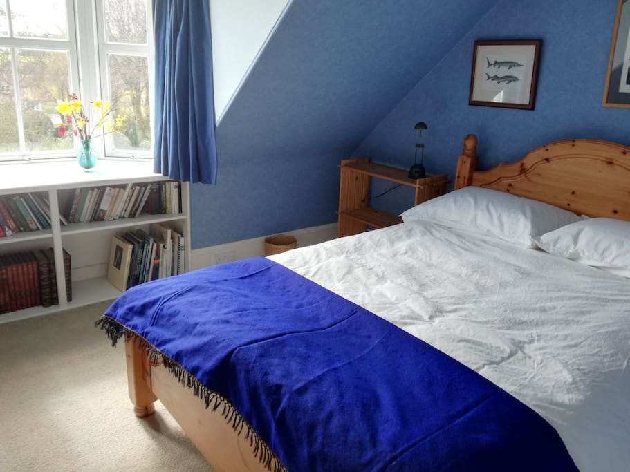 Blue Room Double Bed