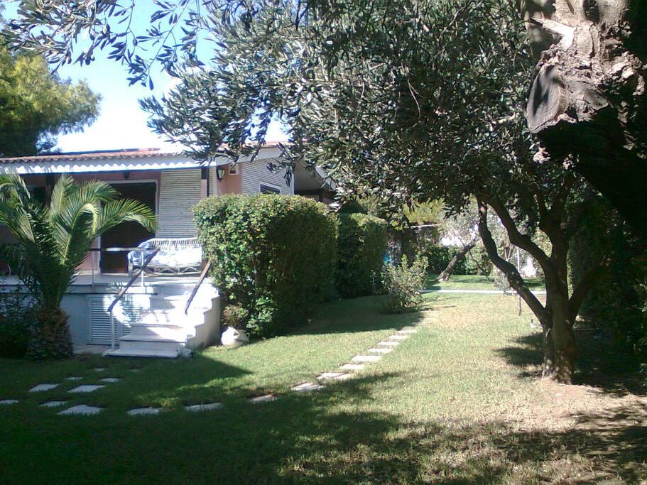 Αποψη του σπιτιού μέσα στον πράσινο κήπο