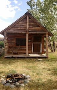 Beautiful rustic log cabin - Cody - Cabin