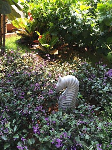 私家花园悠闲客栈
