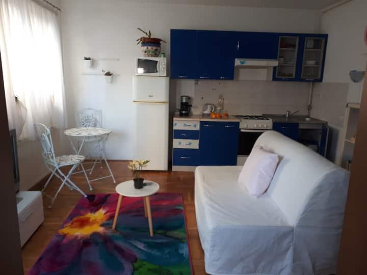 BLUE HOUSE *** APARTMENT, free parking