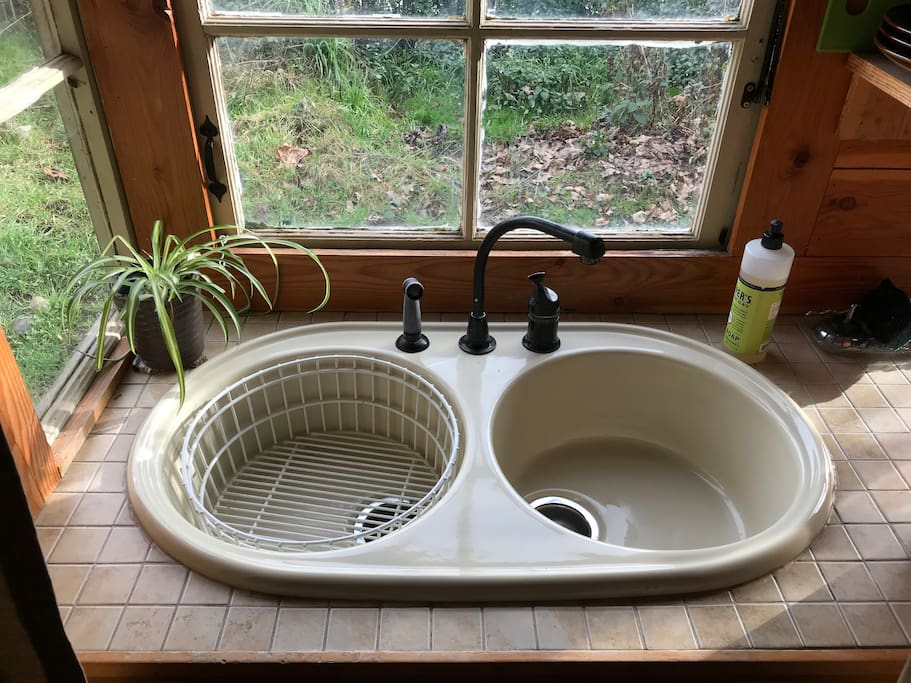 Sink with dish soap.