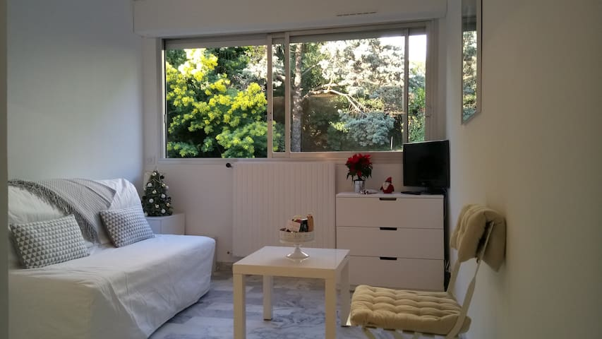 BEAUTIFUL STUDIO IN SECURE RESIDENCE CANNES