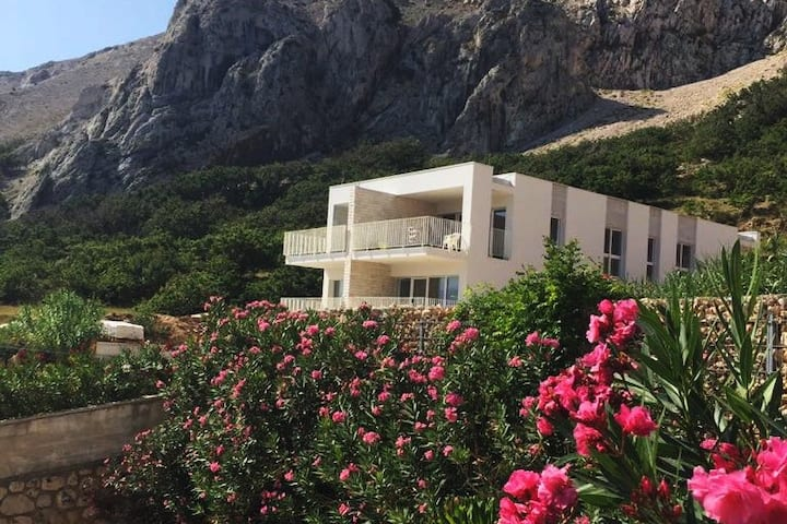 Villa Pag (Sveta Marija)