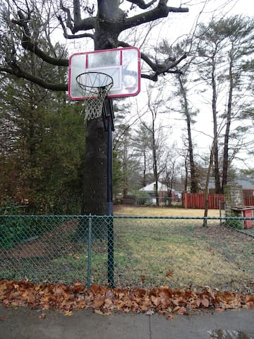basketball goal at the house end of my driveway; view into the back yard