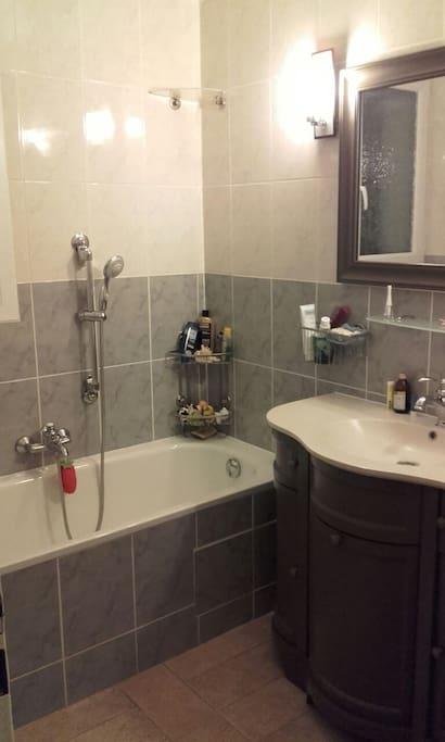 La salle de bain . Douche et baignoire