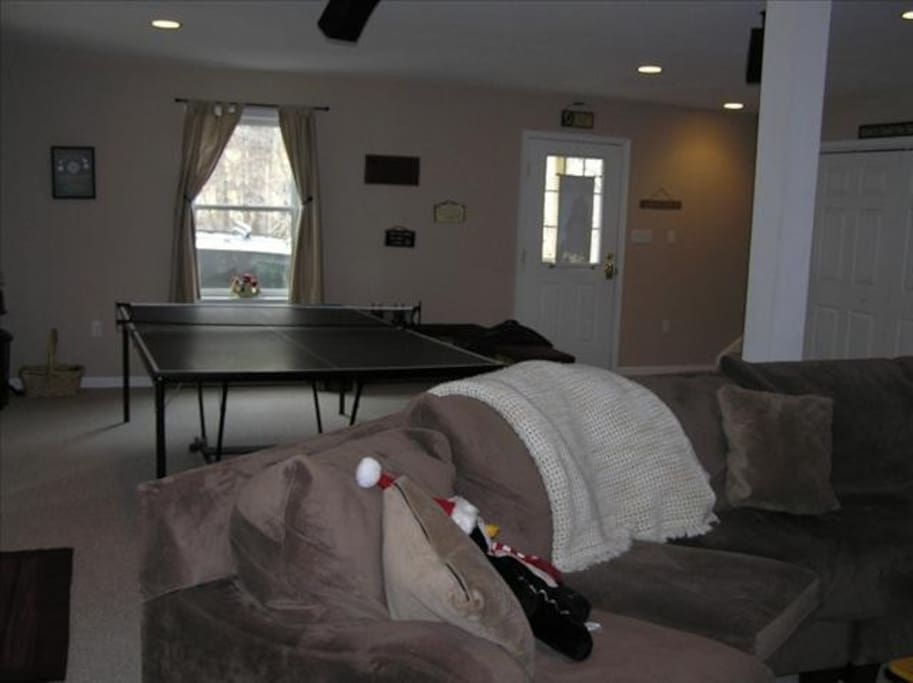 Game room with ping pong, shuffleboard, megatouch, large screen TV