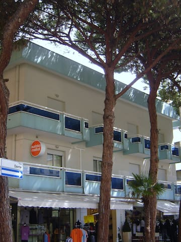 Apt for 2+2 pers - dog welcome in Riccione R21507