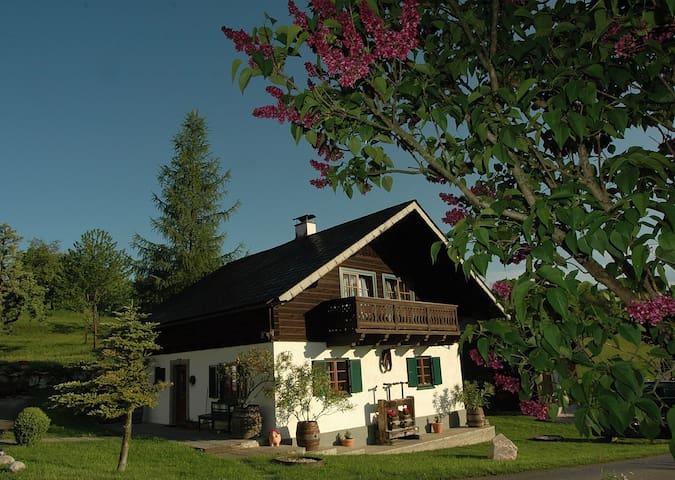 Ferienhaus am Attersee mit eigenen Badestrand - Buchenort - Casa