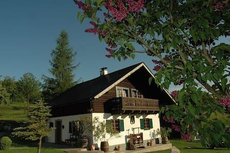 Ferienhaus am Attersee mit eigenen Badestrand - Buchenort - บ้าน