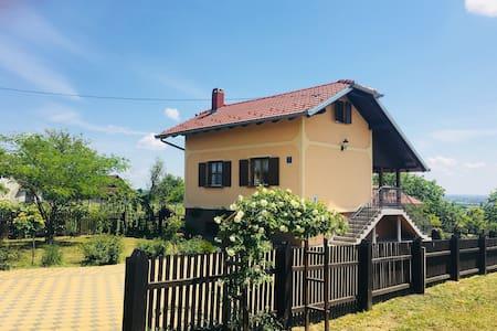 Holiday house Mirna