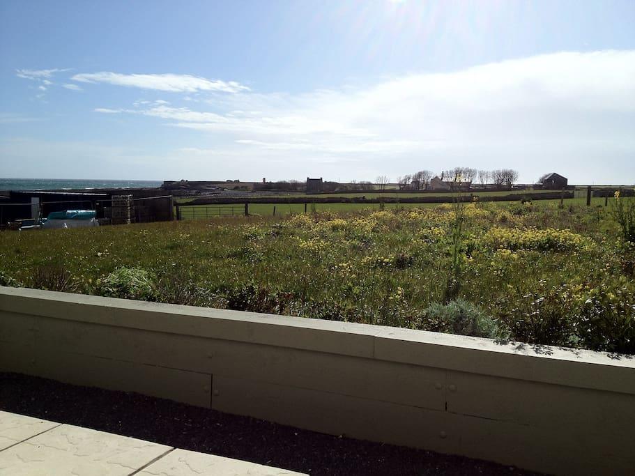 View over Scarlett Sea