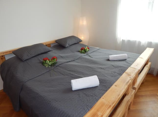 spacious room in Vinohrady