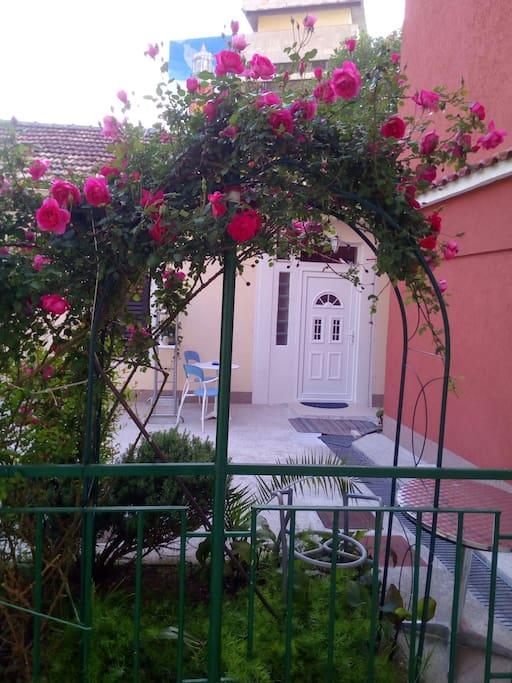 Garden - Entrance
