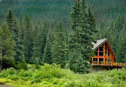 Bear Cave Suite   FEB rates $149nt M-Th! - Breckenridge