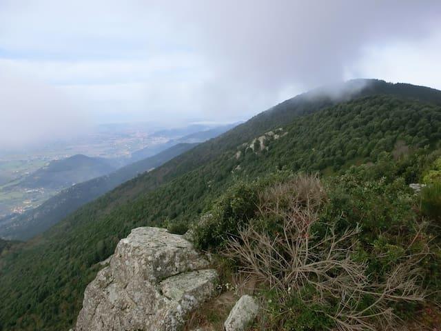 Sweet dreams in Tuscany - La Rotta - บ้าน