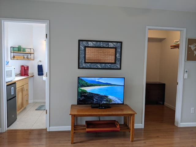 Roku-enabled TV and walk-in closet