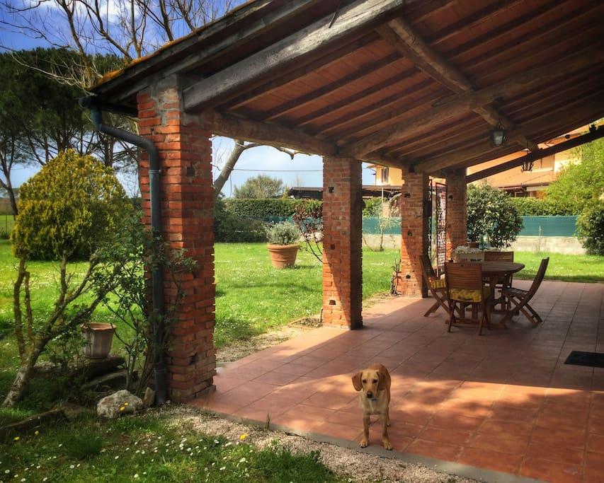 Antica casa colonica con ampio giardino case in affitto - Case con giardino in affitto ...
