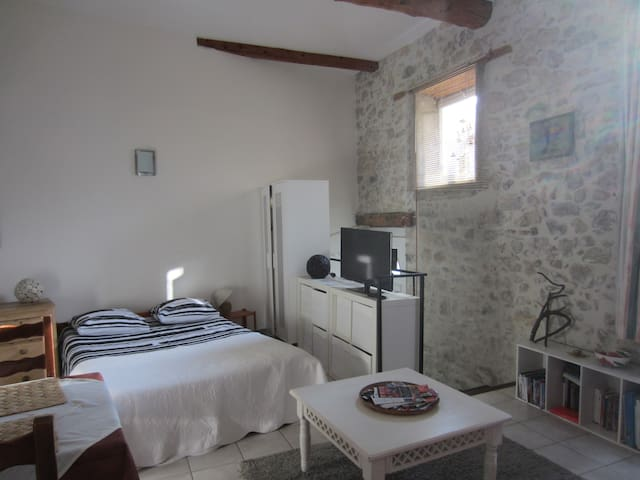 private gound floor studio - Lagrasse - Apartment