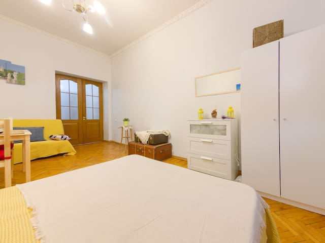 Large and comfortable apartment in the center.