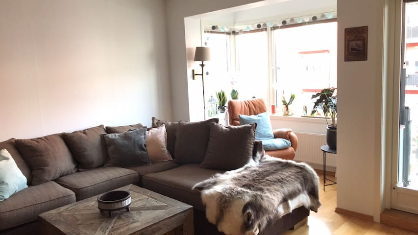 Modern apartment in heart of Oslo