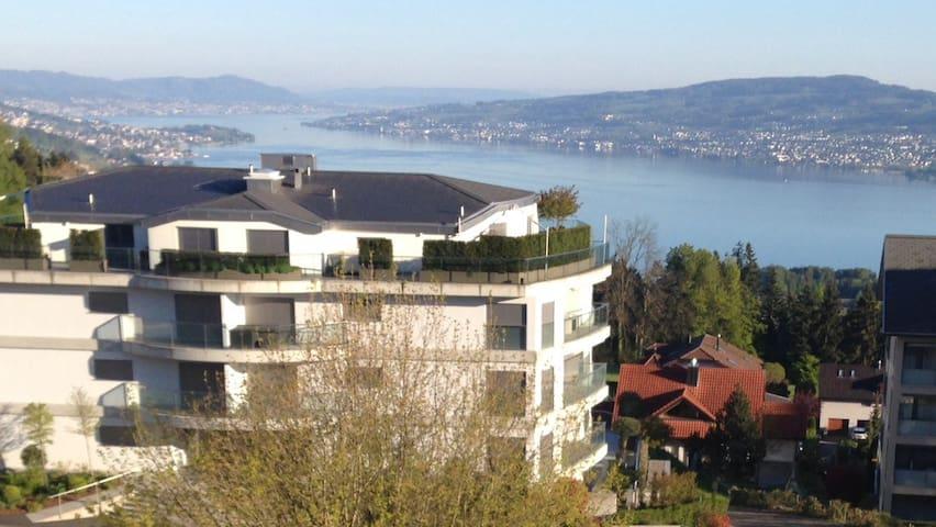 Panoramablick - Feusisberg