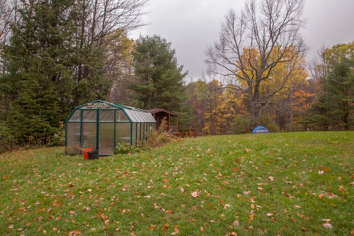 Campsites near hiking trails, w/ showers, & more