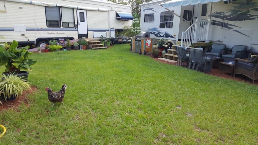 New Listing! Loblolly Acres Farm Stay (RV)