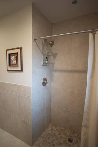 Hallway full bathroom shower/handicap accessible