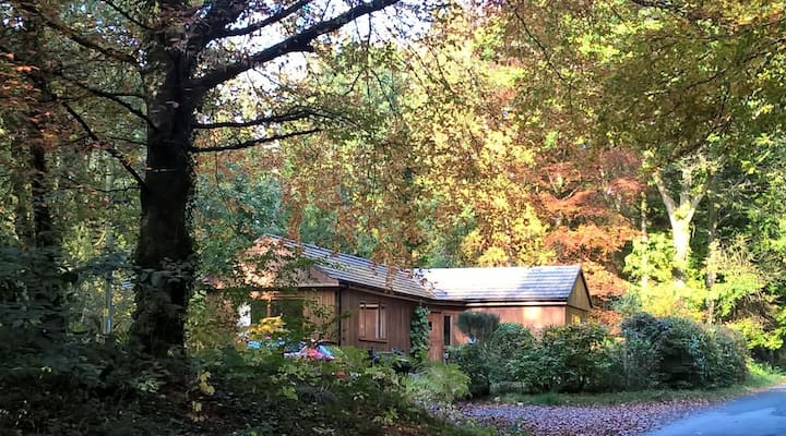 The Shack (CosyHolidayCottages)
