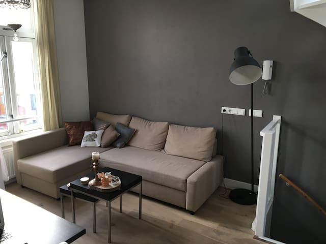 Lovely apartment with rooftop terrace in Utrecht - Utrecht - Apartment