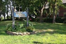 Welcome to Walnut Beach!