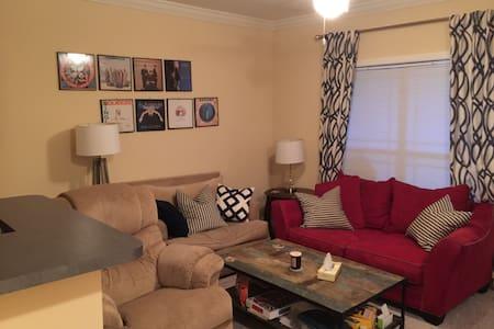 Great upscale 1 bedroom apt privacy - Appartamento
