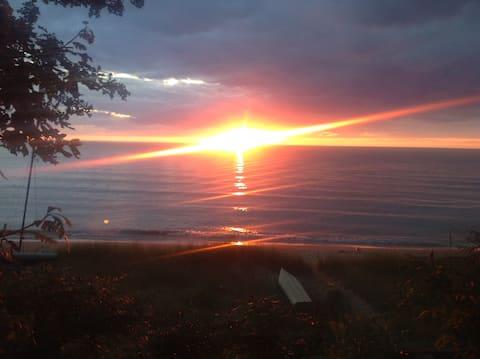 Sun Bunny Beach