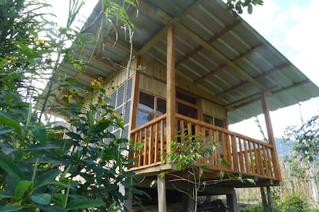 Intag Colibri Cloud Forest Reserve