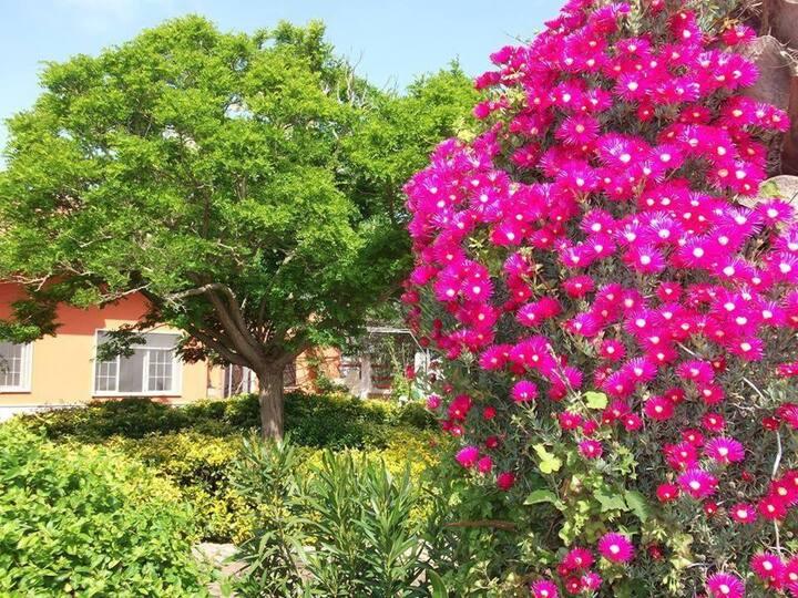 Il Giardino di Alba