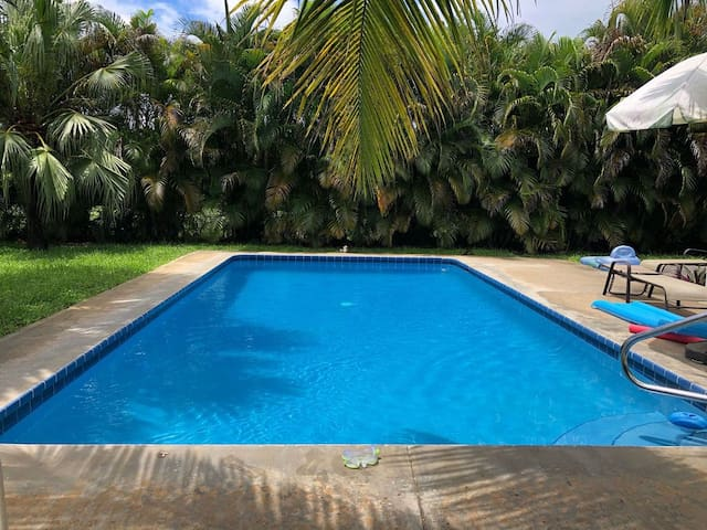 Private Tropical Getaway!  2/2 Home with Pool!