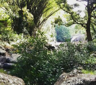 T2 avec jardin st denis - Saint-Denis