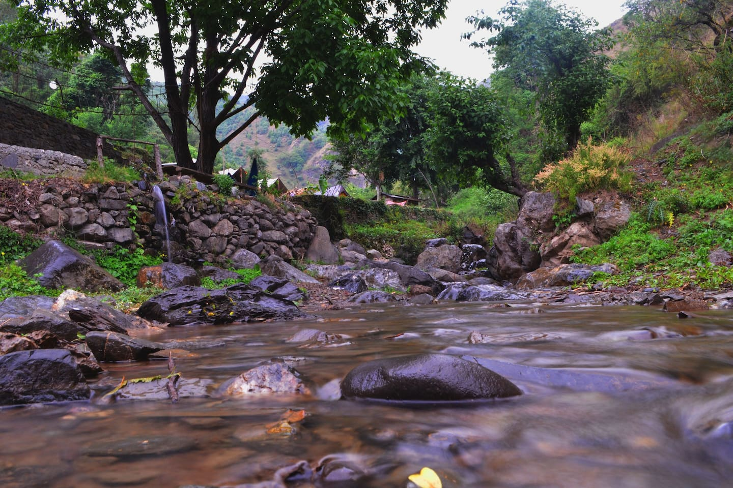 Surrender to nature or dip your feet in the stream of river flowing through your backyard.