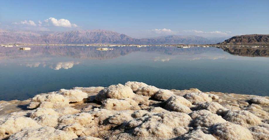 Прекрасная жемчужина пустыни, около Мертвого моря