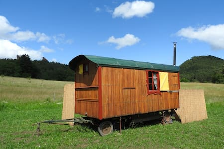Gemütlicher Bauwagen im Herzen des Pfälzer Waldes