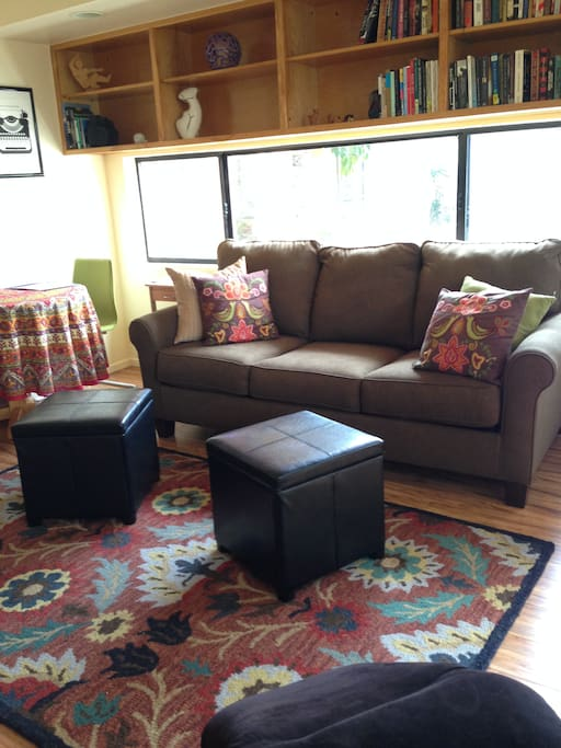 Apt. Living area w/Pull out Sofabed