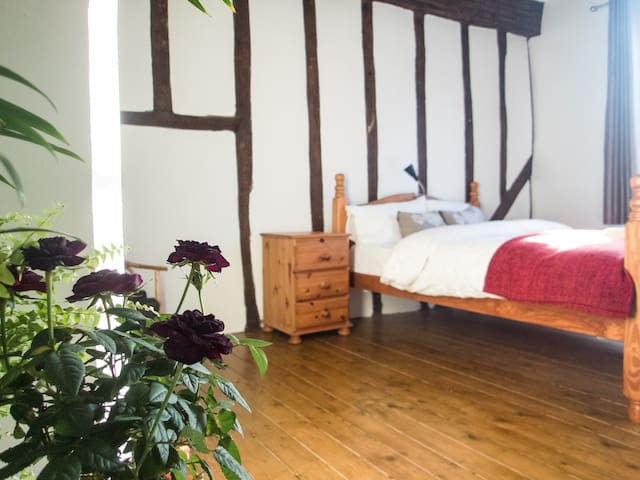 Beautiful and cozy room in central location - York - Leilighet